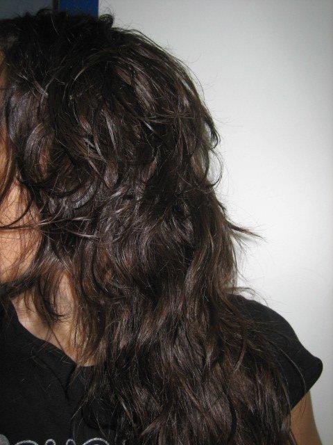 Ahuecador pelo largo